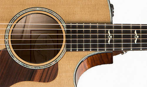 Closeup view of the Taylor 614CE.